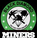 BDMS logo color (1)